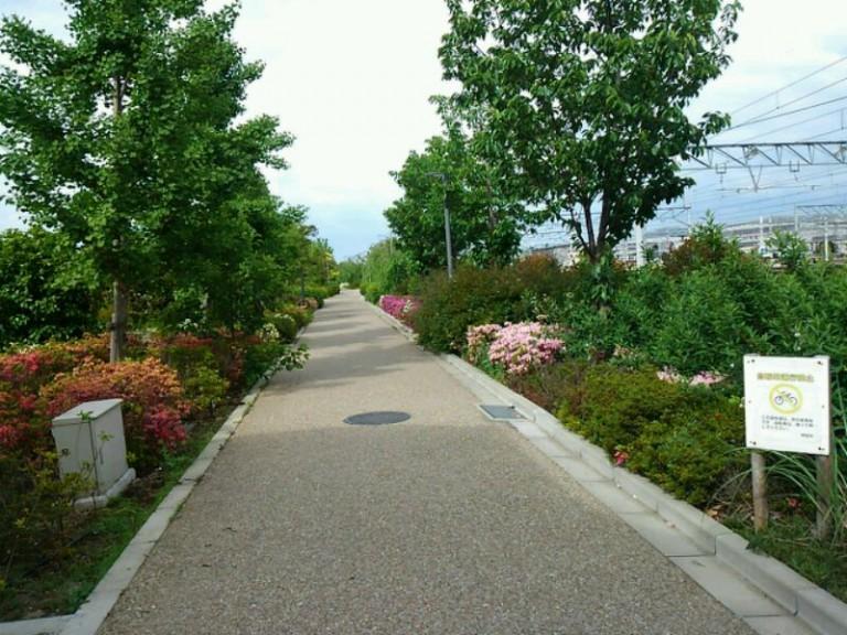 緑の遊歩道