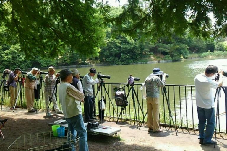 カメラ構える人々