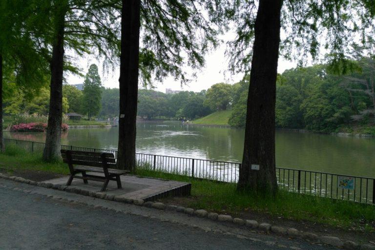 千里南公園_池周辺